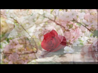 Dschinghis Khan – Eine Rose Fur Maria Madalena
