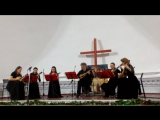 Петербургские мандолины под управлением Александра Журавского