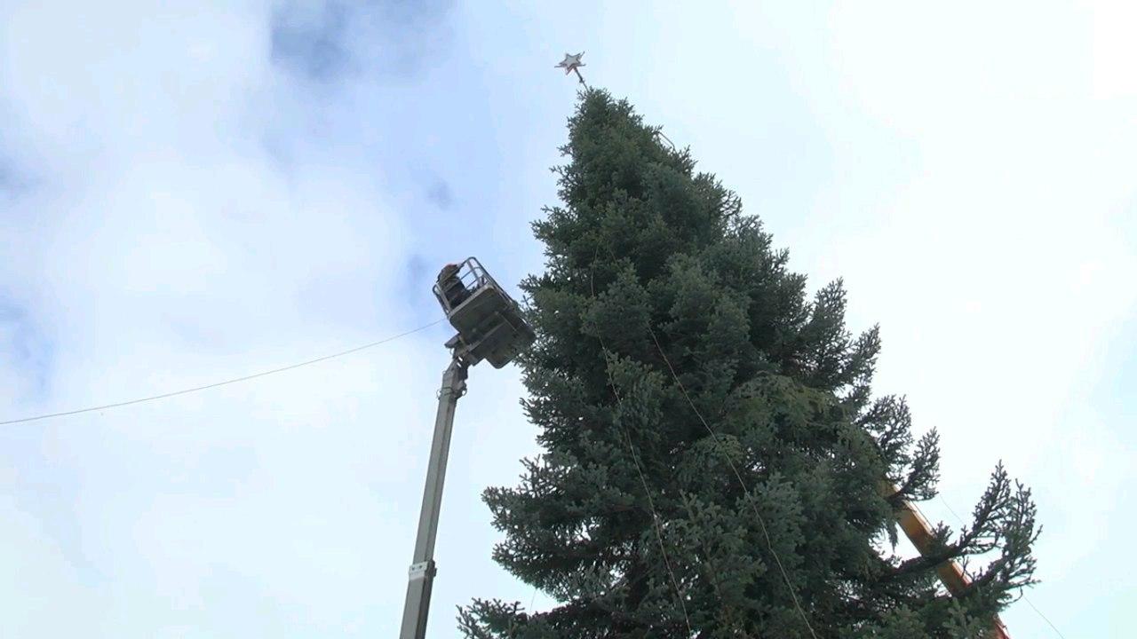Главную елку Карачаево-Черкесии доставили в Черкесск из Зеленчукского района