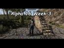 Alpha 16 jails, mountain men, bear and electricity updates
