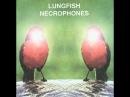 Lungfish - Necrophones (2000) [Full Album]