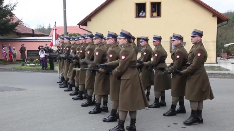 2017- 05-05 Salwa honorowa Kompanii Reprezentacyjnej Wojska Polskiego