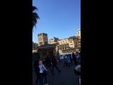 Прогулка по старому рынку Каира ещё
