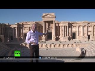 Возвращение ИГИЛ в Пальмиру — кому это выгодно и в чем опять обвиняют Россию