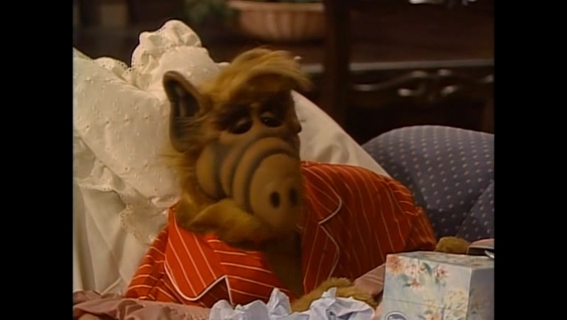 Alf Quote Season 4 Episode 12 _Альф в бреду