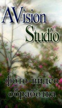 Avision Studio, 25 октября , Саранск, id48724006