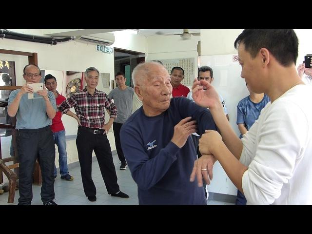 Ip Chun 葉準, 93 years old play Chi Sao