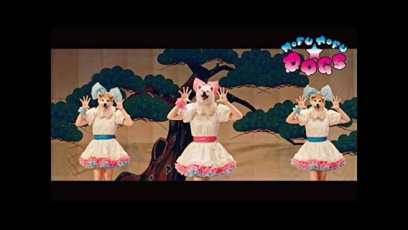 """MOFU MOFU☆DOGS """"Waiting4U〜モフモフさせてあげる〜"""" M/V (AKITA DOG POP STAR) 犬の日 11月1日"""