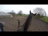 Horse riding Fail Go Pro hero 4 HD