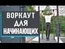 Воркаут: советы для начинающих от абсолютного чемпиона по бодибилдингу – Дмитрия Селиверстова