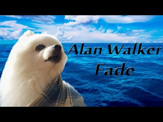 Gabe the Dog (Alan Walker - Fade)