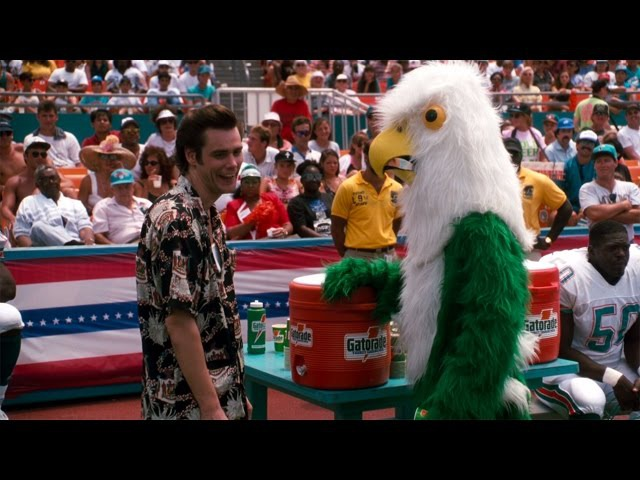 Драка с попугаем-талисманом — Эйс Вентура: Розыск домашних животных (1994) сцена 10/10 HD