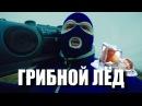 ГРИБНОЙ ЛЁД GTHO vs Попса