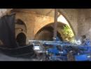 Старый мини дворец в Яффо с летучими мышами
