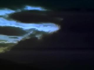 Наедине с природой (2003) лесная куница