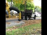Sia Magazin - This Is a Giant Leaf Vacuum Cleaner..LIKE (y) Sia...(840p)