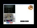 Шерстяной Джон Сина 2 прикол в видео чате