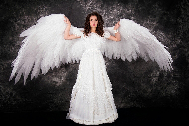 ангел крылья фото