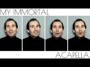 My Immortal - Evanescence TTBB Acapella Cover by Stefan Wyatt