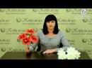 Новинки в интернет-магазине Kvitu! 106 Букет гвоздики объемные, 42см