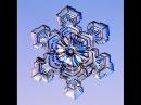 Макро фото снежинок 2 увеличенные снежинки