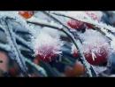 MS Christmas Food TV Ad 2017 _ An extraordinary Christmas