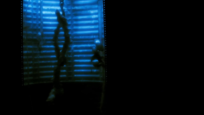 DEATH HOUSE Trailer (2017) Kane Hodder, Dee Wallace Horror Movie HD