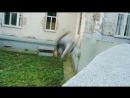 Лучшие трюки за 2012 год ¦ Best frames-energy of acrostreet