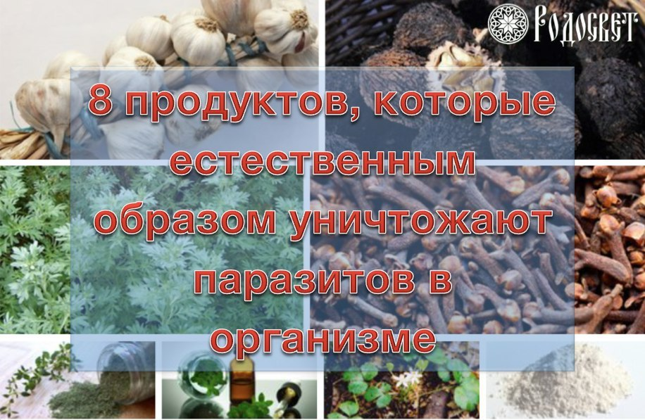 https://pp.userapi.com/c837121/v837121735/54d47/LwgycKFwi4U.jpg