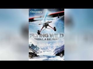 Полеты вглубь Аляски (2011