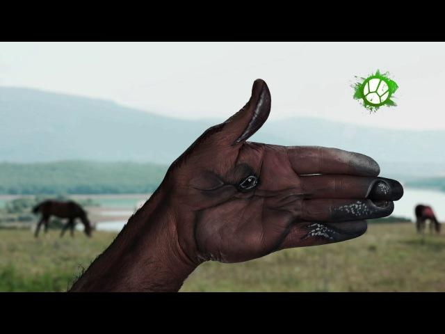 Бодиарт. Лошадь | Природу делают люди | Живая Планета