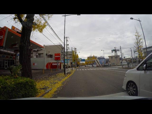 Жизнь в Японии Осень Дорога