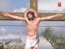 Телеканал ВІТА новини 2017-09-15 Вінницькі атовці встановили хрест у багатотисячній