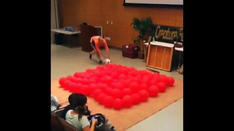 Собака рекордсмен по лопанию шариков