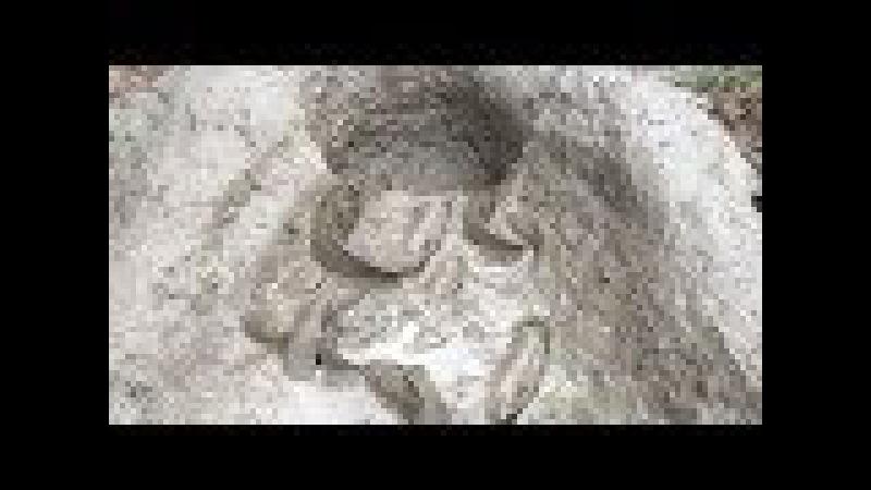Amazing Muddy Soil Hole Trap - Smart Girl Build Deep Hole Muddy Soil Fish Trap 100% Get Alot of Fish