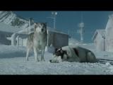 Белый плен (2006) супер фильм 8.510