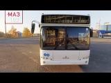 Автобусы МАЗ - MAZ PASSENGER BUSES