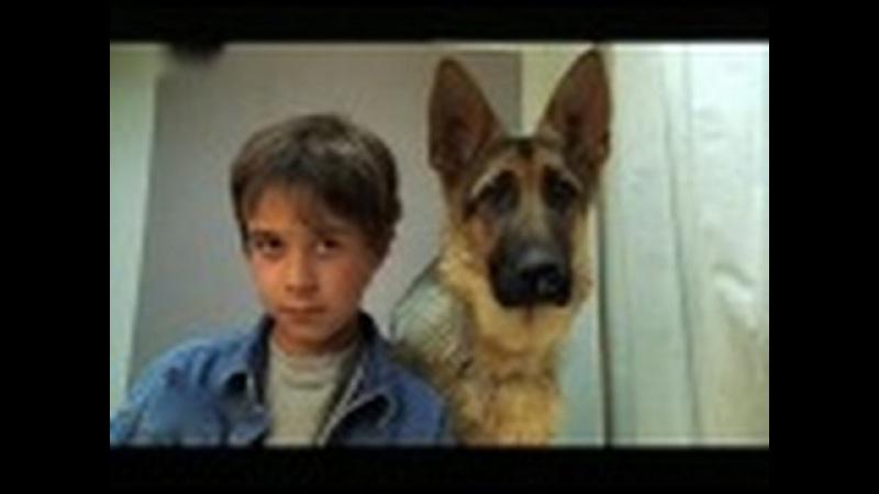 Малыш Рекс. Рождественские приключения комиссара Рекса. 2 часть. 0 сезон, 2 серия