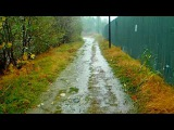 Музыка осени, Дождь в Сочи - Макопсе-Дружба -  D.Cimarosa Andante Grazioso a-moll