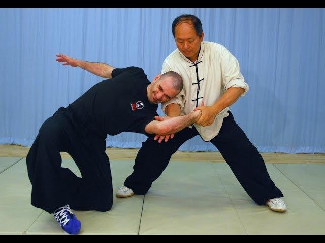 Tai Chi Fighting! Taijiquan Martial Applications (Yang-style 37-postures) YMAA