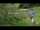 Филлис Леи Фуромото Примирение путь мастерства от рэйки RECONCILIATION Along the Path of Mastery from REIKI Conciliatio