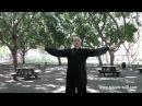 Дмитрий Дейч: разминка для занятия тайцзицюань (часть 3)