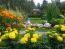 Цветы на даче Дачи в цветах у наших дачников