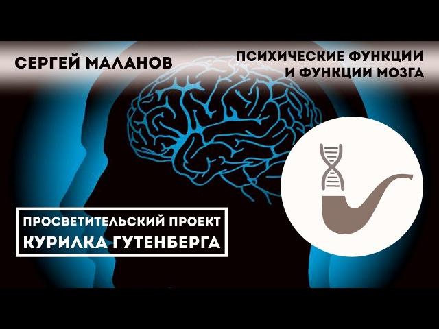 Психические функции и функции мозга - Сергей Маланов gcb[bxtcrbt aeyrwbb b aeyrwbb vjpuf - cthutq vfkfyjd
