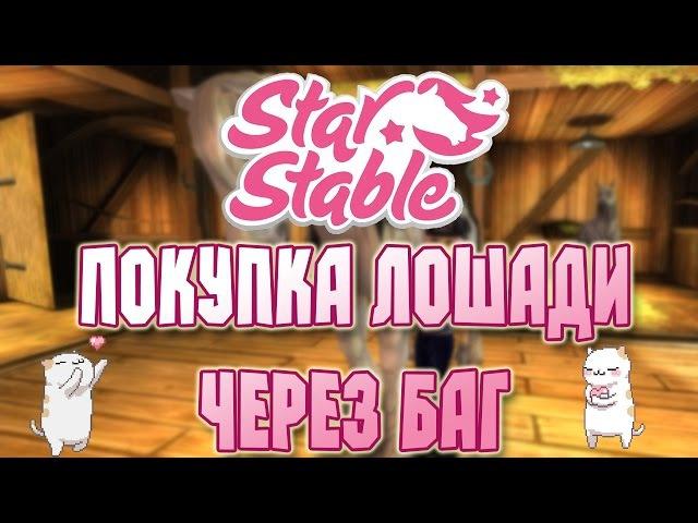 Star Stable на русском/ Как попасть в Эпону через БАГ Покупка Шайра