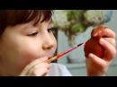 Творческая коробочка для детей Чудо-Весна Зайкин Бокс