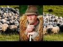 Anatol Melnic - FARSA -- minus 600 lei (JurnalFM)