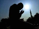 Исламская Мудрость всем слушать