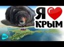 Я люблю тебя, Крым! Добро пожаловать домой! Возвращение на Родину. Сборник песен