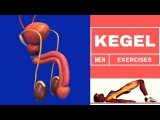 Kegel Exercises For Men With Prostate Cancer,Treating Male Urinary Incontinence | Benefits Of Kegel